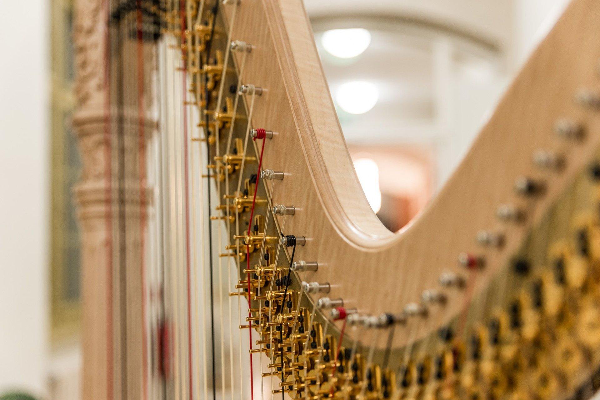 Harfe/Foto: Marcus Lieder