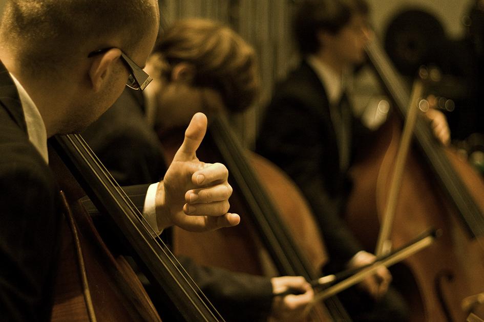Kontrabassisten im Konzert/Foto: Johannes Kroemer
